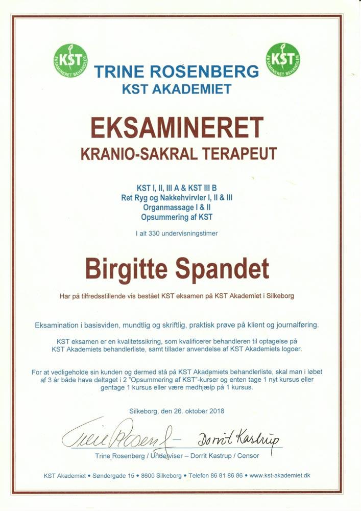 BirgitteDiplom 1 - Spandet Terapi