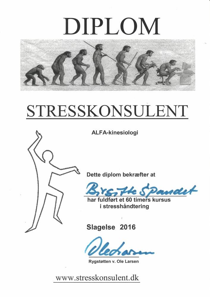 BirgitteDiplom 3 - Spandet Terapi