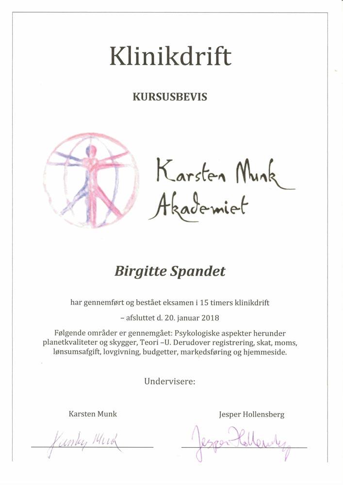 BirgitteDiplom 5 - Spandet Terapi