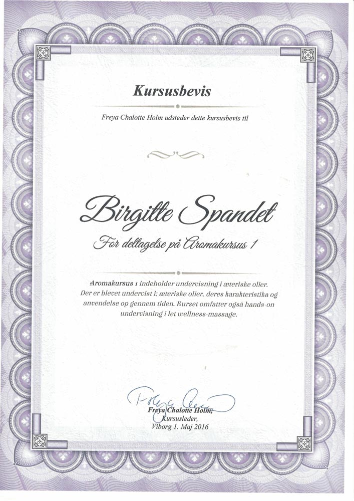 BirgitteDiplom 6 - Spandet Terapi