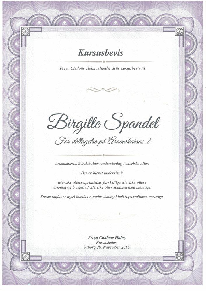 BirgitteDiplom 7 - Spandet Terapi