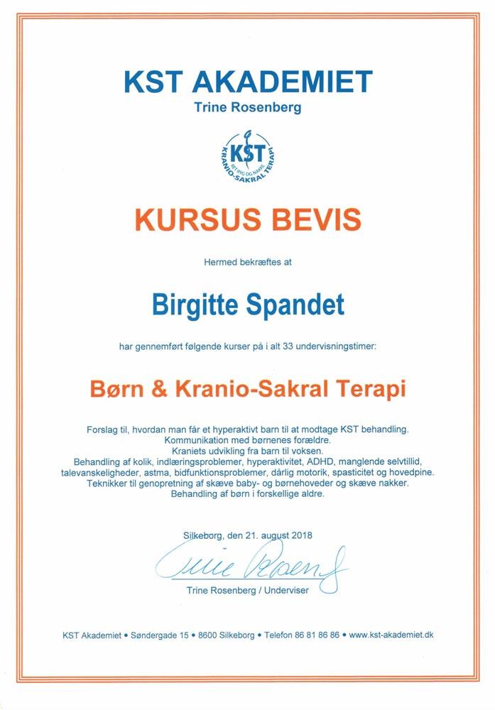 BirgitteDiplom 9 - Spandet Terapi